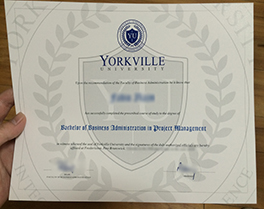Yorkville University degree sample, fake Yorkville University diploma