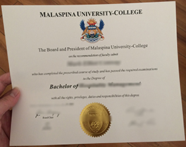 how long to get Malaspina University College diploma