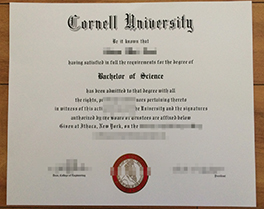 buy phony Cornell University degree, Cornell University diploma order
