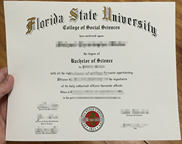 buy fake diploma of Florida State University, fake degree in Florida