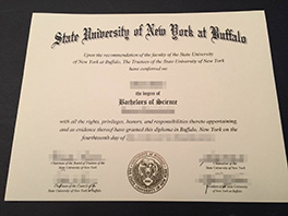 State University of New York at Buffalo diploma sample