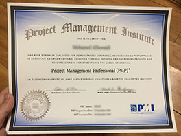 how to obtain PMP fake certificate