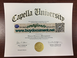 Want More Money? Get Fake Capella University Degree