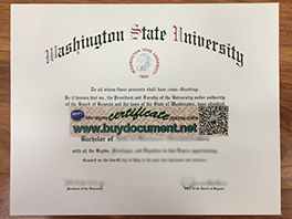 How Much For Fake Washington State University (WSU) Diploma?