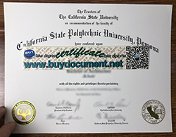 How to Buy Fake California State Polytechnic University, Pomona (CPP) Diploma?